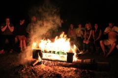 Roaring fire 2015